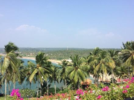 インドで過ごす年末年始。南インドの年越しは楽園ケララのコヴァラムビーチへGO!